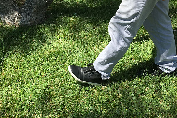 walking in the grass